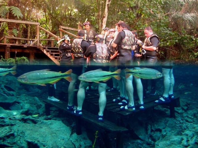 bonito_ms_aquario-natural-flutuacao10