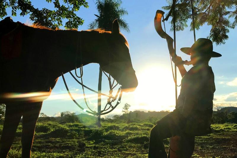 Final de semana no Pantanal